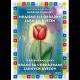 ePublikace Hrajeme si s obrázky jarních květin